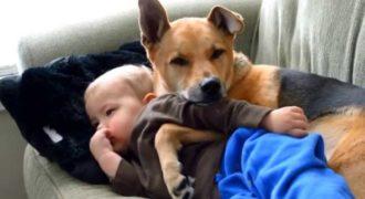 Άφησε μόνο του το άρρωστο μωρό της για ένα λεπτό. Όταν επέστρεψε; Αυτό που είδε ήταν καταπληκτικό!