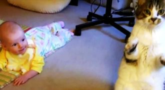 Η μαμά αφήνει το μωρό της στο χαλί. Τώρα δείτε την φοβερή αντίδραση της γάτας!