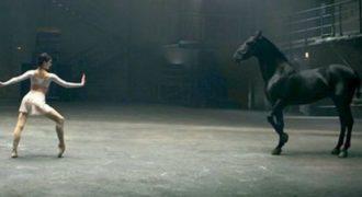 Αυτή η μπαλαρίνα χορεύει απίστευτα, το άλογο όμως είναι αυτό που κλέβει την παράσταση…