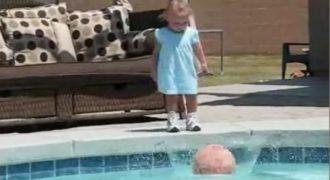 Αυτό το παιδάκι ρίχνει την μπάλα του στην πισίνα, αυτό που ακολουθεί απλά σοκαριστικό! (βίντεο)