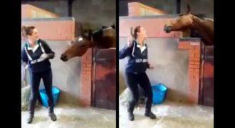 Αυτό το κορίτσι έπαιξε ένα τραγούδι στο κινητό της τηλέφωνο. Η Αντίδραση του αλόγου της είναι ανεκτίμητη !!