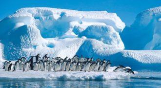Μια βόλτα με drone στην Ανταρκτική!