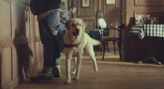 Αυτός ο σκύλος-οδηγός τυφλών ανθρώπων, αφήνει τον ιδιοκτήτη του. Το γιατί, θα σας συγκινήσει.