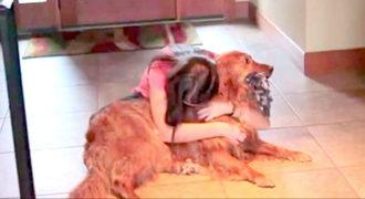Ένιωθε άσχημα που άφηνε τον σκύλο της μόνο του πολλές ώρες, έτσι της ήρθε αυτή η πρωτότυπη ιδέα!