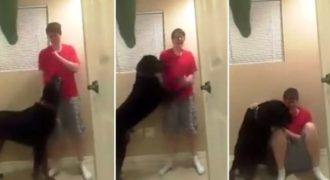 Ένα αυτιστικό παιδί παθαίνει κρίση και χτυπάει τον εαυτό του δείτε όμως την συγκλονιστική κίνηση του σκύλου του.