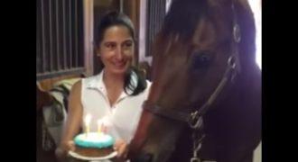 """Με μια τούρτα τραγούδησαν στο άλογο τους """"Happy Birthday"""" η Αντίδραση του Εκπληκτική"""