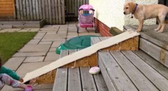 Αυτό το χαριτωμένο κουτάβι λαμπραντόρ φοβάται να κατέβει την τσουλήθρα! Δείτε τι κάνει για να κατέβει!