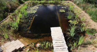 Απίστευτη κατασκευή: Έφτιαξε μια φυσική πισίνα για το σπίτι του! Κάπως έτσι θα είναι οι πισίνες του μέλλοντος!
