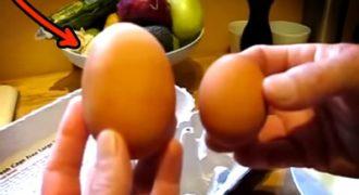 Η κότα τους γέννησε αυτό το ΤΕΡΑΣΤΙΟ αυγό. Δεν φαντάζεστε τι βρήκαν μέσα σε αυτό, όταν το έσπασαν…