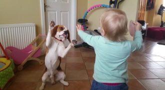 Μόλις δείτε τι κάνει αυτό το κορίτσι με το σκυλάκι της, θα «λιώσετε»!