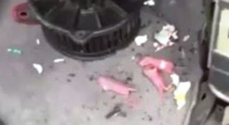 Δεν έχει ξαναγίνει – Απίστευτο περιστατικό σε ηλεκτρολογείο αυτοκινήτων στα Χανιά (video)