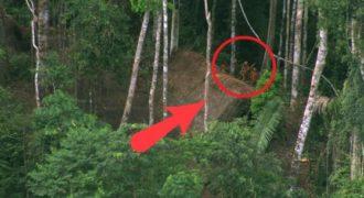 Αυτή ήταν η αντίδραση μιας φυλής του Αμαζονίου όταν πέρασε ένα αεροπλάνο από πάνω τους.