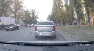 Ένα περιστέρι προκαλεί τροχαίο ατύχημα στους δρόμους της Ρωσίας. (Βίντεο)