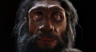 Η πορεία του ανθρώπου μέσα σε 90 δευτερόλεπτα. Το εντυπωσιακό βίντεο της εξέλιξης από τον πίθηκο στον άνθρωπο…