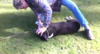 Δραματικό Βίντεο: Έσωσε σκύλο με τεχνητή αναπνοή!
