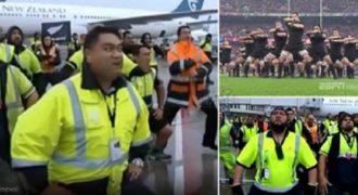 Δείτε πως υποδέχτηκε το προσωπικό του αεροδρομίου την Εθνική Νέας Ζηλανδίας μετά την νίκη.