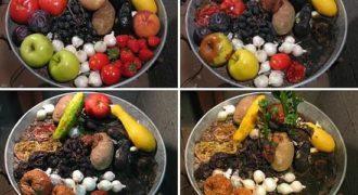 Φρούτα και λαχανικά μετά από 74 ημέρες!