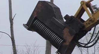 Δείτε το τρομακτικό μηχάνημα που… εξαφανίζει δέντρα σε δευτερόλεπτα! (Βίντεο)