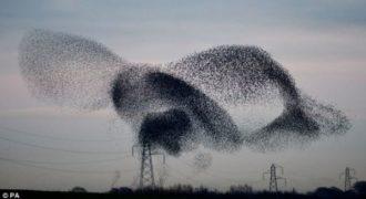 Απίστευτο… Δείτε τι συνέβη στον ουρανό της Ολλανδίας !