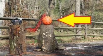 Δείτε τι έγινε όταν παραφούσκωσαν μία μπάλα μπάσκετ! (Βίντεο)