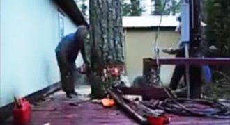 Θα πάθετε πλάκα! Δείτε τι έγινε την ώρα που έκοβε ένα τεράστιο δέντρο δίπλα από το σπίτι του! Απίστευτος! (Βίντεο)