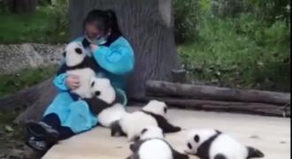 Να αγκαλιάζεις Πάντα! Η καλύτερη δουλειά του κόσμου! (Video)