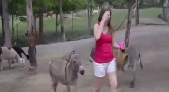 ΘΑ ΠΑΘΕΙΣ ΠΛΑΚΑ!!! – Δείτε τι θα κάνει αυτό το γαιδούρι στη κοπέλα!!! (Βίντεο)