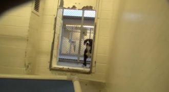 Δείτε την αντίδραση αυτού του σκύλου όταν γνωρίζει ότι κάποιος θα το υιοθετήσει. (Βίντεο)