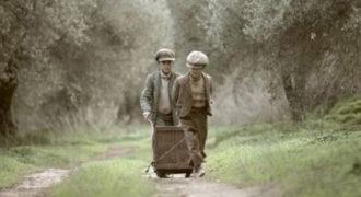 Το μάζεμα της ελιάς: Εκπληκτικό βίντεο για μια παράδοση αιώνων