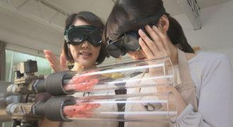 Τηγανιτές γαρίδες σε 3 δευτερόλεπτα (Video)