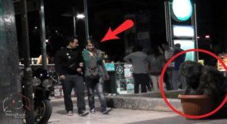 Ο Θάμνος που τρομάζει τους ανθρώπους στο κέντρο της Αθήνας. Η μεγάλη επιστροφή…