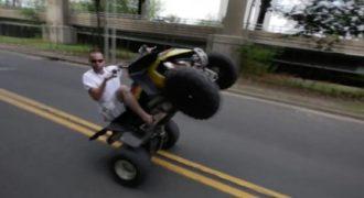 Βίντεο δείχνει την σύγκρουση μιας γουρούνας με ένα αυτοκίνητο. Συγκλονιστικό!