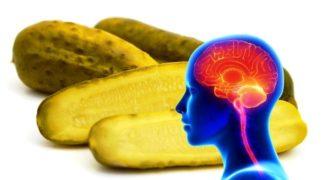 Προφανώς αυτό συμβαίνει στον εγκέφαλο όταν τρώμε ένα αγγουράκι τουρσί κάθε μέρα για έναν μήνα.
