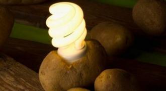 Με βραστές πατάτες μπορείτε να έχετε φως σε ένα δωμάτιο για έναν μήνα! Δείτε πώς! (ΒΙΝΤΕΟ)