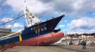 «Όταν κερνάς τσίπουρα τον Καπετάνιο»: Ένα βίντεο με καπετάνιους που διάλεξαν λάθος επάγγελμα.