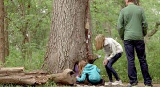Βρήκαν μια παράξενη πόρτα σε ένα δέντρο. Αυτό που είδαν μέσα… Θα σας Συγκινήσει!(Βίντεο)