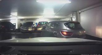 Μάστερ στο παρκάρισμα; (Video)