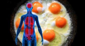Τί θα συμβεί στον Οργανισμό μας αν Φάμε 3 Αυγά μέσα σε μια μέρα. Δεν είχαμε Ιδέα!