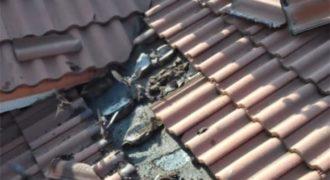 Σήκωσε τα κεραμίδια από το σπίτι του και ΑΥΤO που Βρήκε από Κάτω τον έκανε να Πηδήξει στον Αέρα!