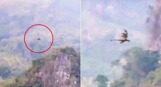 Αληθινός Δράκος, πετάει πάνω από Βουνό στην Κίνα: Δείτε το Βίντεο που έχει Σοκάρει τον Πλανήτη!