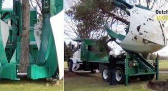 Μηχάνημα που μετακινεί τα δένδρα χωρίς να τα κόψει και είναι έτοιμα για επαναφύτευσης