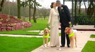 Αυτό το ζευγάρι τυφλών μόλις παντρεύτηκε! Δείτε τι κάνουν τα σκυλιά τους… Θα δακρύσετε (Βίντεο)
