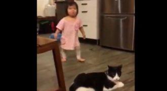 Ξεκαρδιστικό βίντεο που έγινε viral: Γάτα έβαλε τρικλοποδιά σε… παιδάκι(Video)