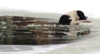 Ένας Ρώσος έσωσε το σκύλο του μέσα από Παγωμένη Λίμνη… (Βίντεο)