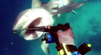 Η τρομακτική στιγμή που ένας δύτης δέχεται επίθεση από καρχαρία ταύρο (Video)
