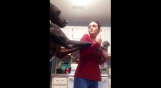 Ο τεράστιος σκύλος βλέπει για πρώτη φορά την ιδιοκτήτριά του αγκαλιά με ένα μικρό κουτάβι. Η αντίδρασή του έχει ρίξει το Ίντερνετ! [βίντεο]