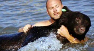 ΣΥΓΚΛΟΝΙΣΤΙΚΟ: Άντρας βουτάει σε Παγωμένα Νερά για να σώσει μια Αρκούδα που Πνίγεται. Δείτε το Βίντεο ΣΟΚ!