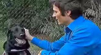 ΣΟΚ! Το Σκυλί Γάβγιζε άγρια στην Babysitter. Προβληματισμένος ο πατέρας βάζει ΚΡΥΦΗ Κάμερα…! [Βίντεο]
