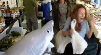 ΣΟΚ! Ζωντανεύει Ο Καρχαρίας Σε Ιχθυοπωλείο Του Λονδίνου!!!