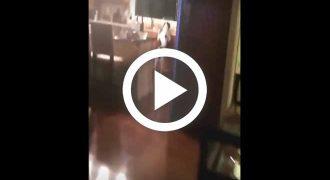 Ξεκαρδιστική αντίδραση σκύλου όταν πιάστηκε στα πράσα! [Βίντεο]